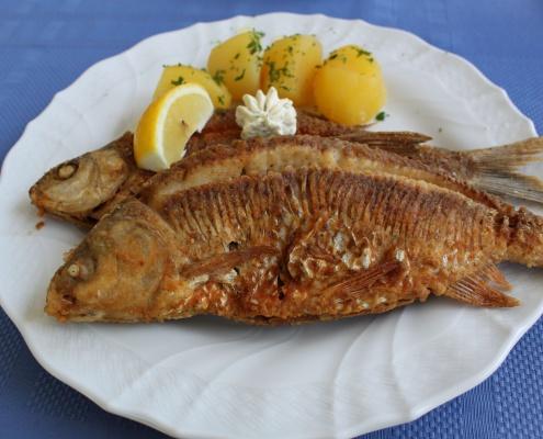 Gasthof Luger - Donaufisch